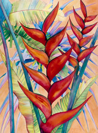 159 - Red Lobster Heliconia