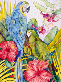 169 - Tropical Birds