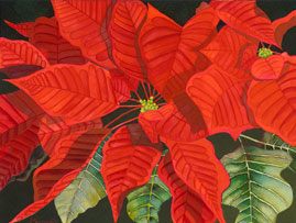 203 - Red Poinsettia