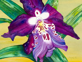 207 - Fresh Purple Orchid